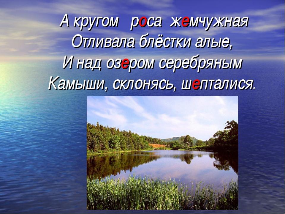 А кругом роса жемчужная Отливала блёстки алые, И над озером серебряным Камыш...