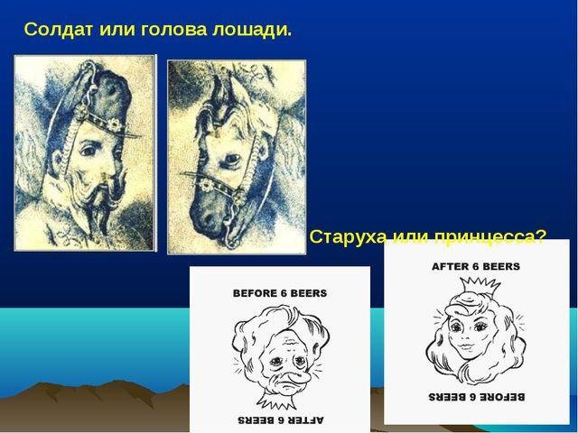 Солдат или голова лошади. Старуха или принцесса?