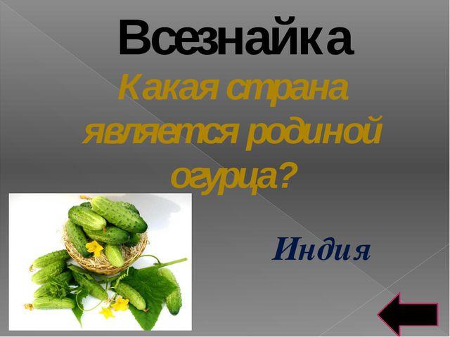 Кухня народов мира К какой кухне мира относится холодный суп из овощей – «бот...