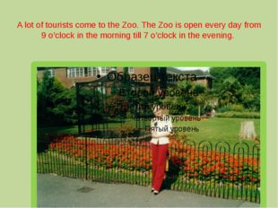 A lot of tourists come to the Zoo. The Zoo is open every day from 9 o'clock i