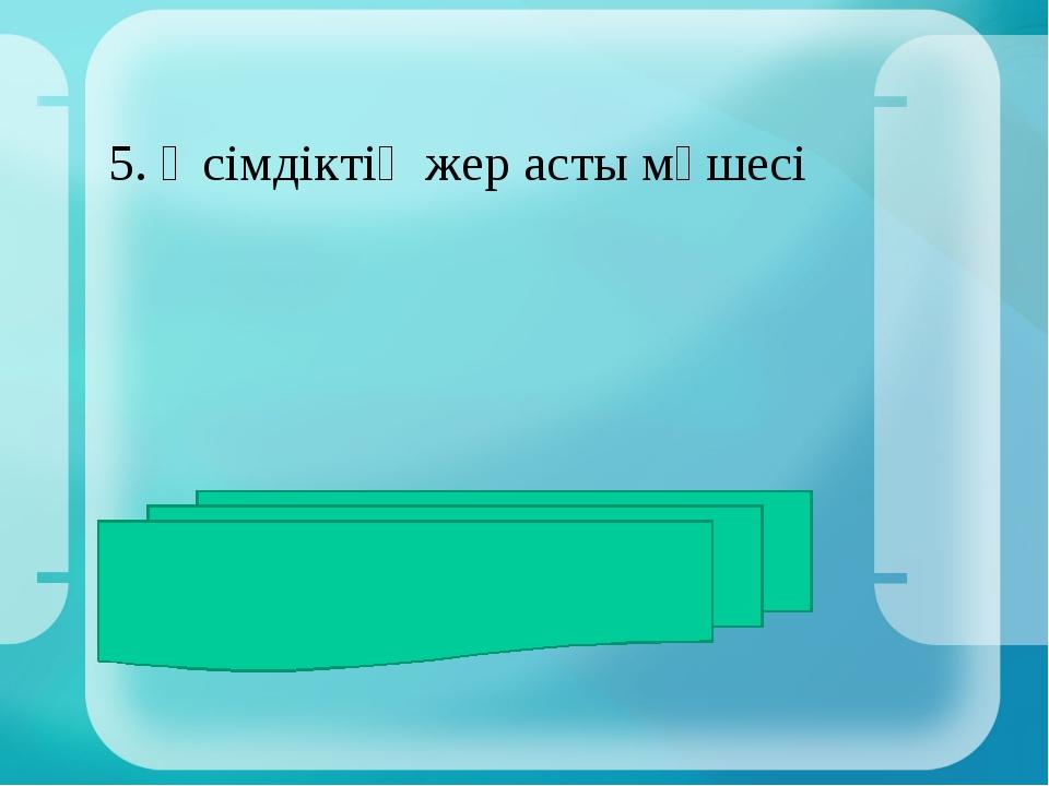5. Өсімдіктің жер асты мүшесі ЖАУАБЫ: тамыр