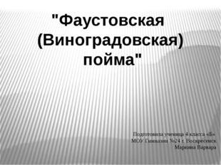 """""""Фаустовская (Виноградовская) пойма"""" Подготовила ученица 4 класса «Б» МОУ Гим"""