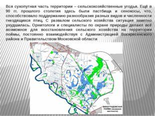 Вся сухопутная часть территории – сельскохозяйственные угодья. Ещё в 90 гг. п