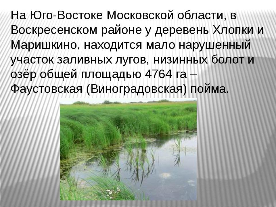 На Юго-Востоке Московской области, в Воскресенском районе у деревень Хлопки и...