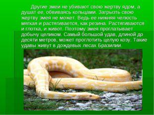 Другие змеи не убивают свою жертву ядом, а душат ее, обвиваясь кольцами. За