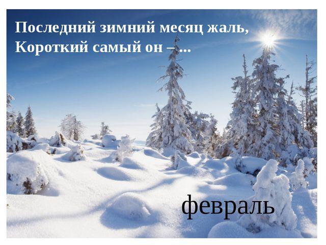 Последний зимний месяц жаль, Короткий самый он – ... февраль