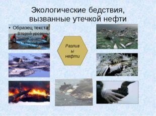 Экологические бедствия, вызванные утечкой нефти Разливы нефти