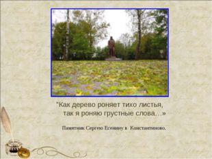 """""""Как дерево роняет тихо листья, так я роняю грустные слова…» Памятник Сергею"""