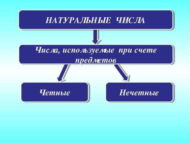 НАТУРАЛЬНЫЕ ЧИСЛА Числа, используемые при счете предметов Четные Нечетные