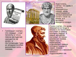 Гиппократ считал, что сердце – очаг теплоты и что в левом желудочке находится