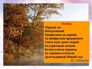 Ноябрь Чёрный лес Неотразимый Прорисован до корней, За ноябрьским предзимьем