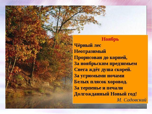 Ноябрь Чёрный лес Неотразимый Прорисован до корней, За ноябрьским предзимьем...