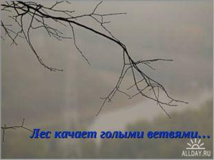 Лес качает голыми ветвями…