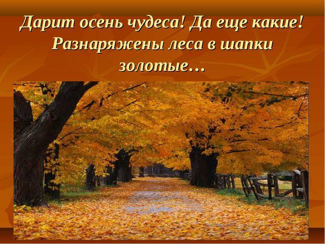 Дарит осень чудеса! Да еще какие! Разнаряжены леса в шапки золотые…