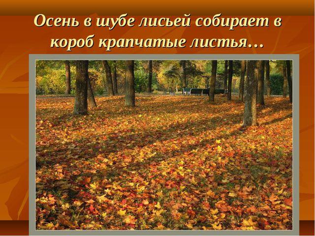Осень в шубе лисьей собирает в короб крапчатые листья…