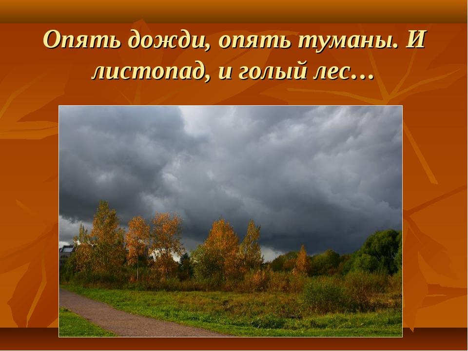 Опять дожди, опять туманы. И листопад, и голый лес…