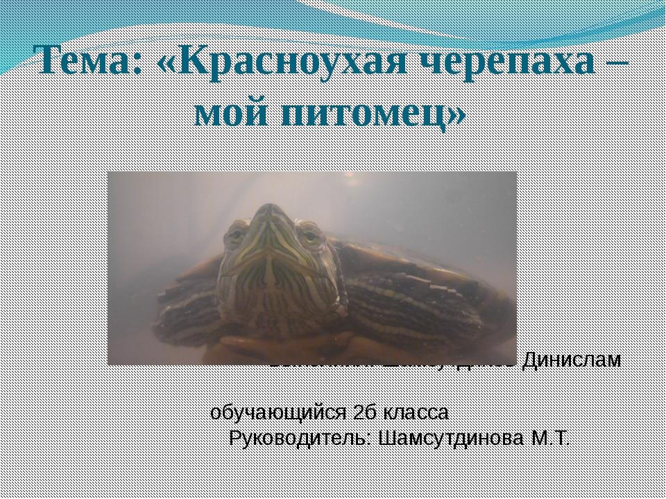 Тема: «Красноухая черепаха – мой питомец»...
