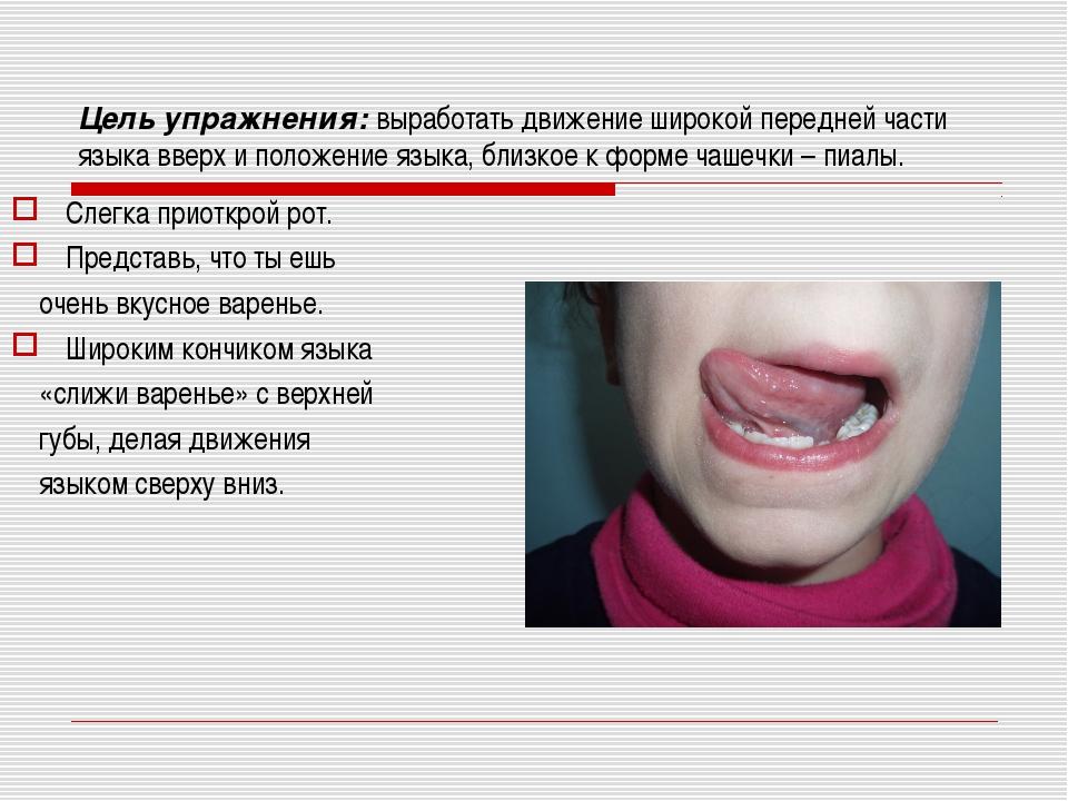 Цель упражнения: выработать движение широкой передней части языка вверх и пол...