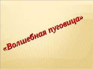 «Волшебная пуговица»