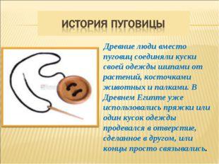 Древние люди вместо пуговиц соединяли куски своей одежды шипами от растений,
