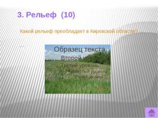 3. Рельеф (40) Какая горная порода используется для механической очистки воды