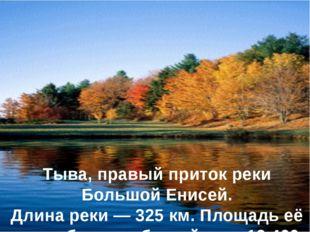 Хамсара́ — река в республике Тыва, правый приток реки Большой Енисей. Длина р