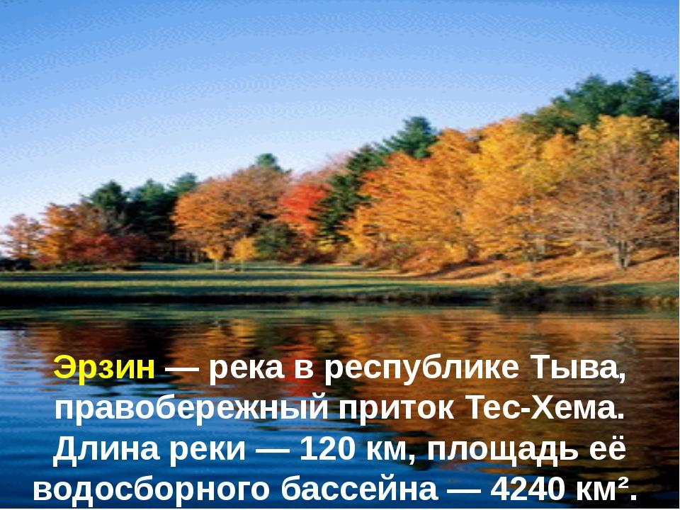 Эрзин — река в республике Тыва, правобережный приток Тес-Хема. Длина реки — 1...