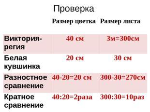 Проверка Размер цветка Размер листа Виктория-регия 40 см 3м=300см Белая кувши