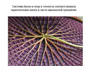 Система балок и опор в точности соответствовала переплетению жилок в листе ам