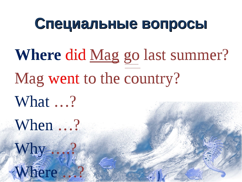 Специальные вопросы Where did Mag go last summer? Mag went to the country? Wh...