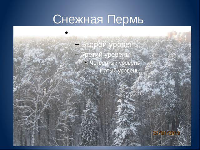 Снежная Пермь