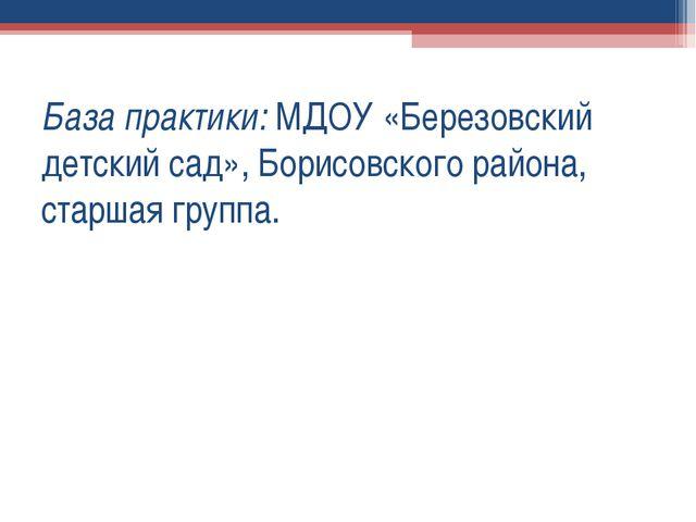 База практики: МДОУ «Березовский детский сад», Борисовского района, старшая г...