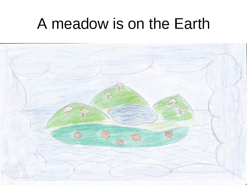 A meadow is on the Earth