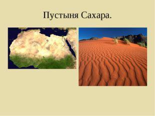 Пустыня Сахара.
