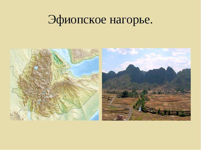 Эфиопское нагорье.