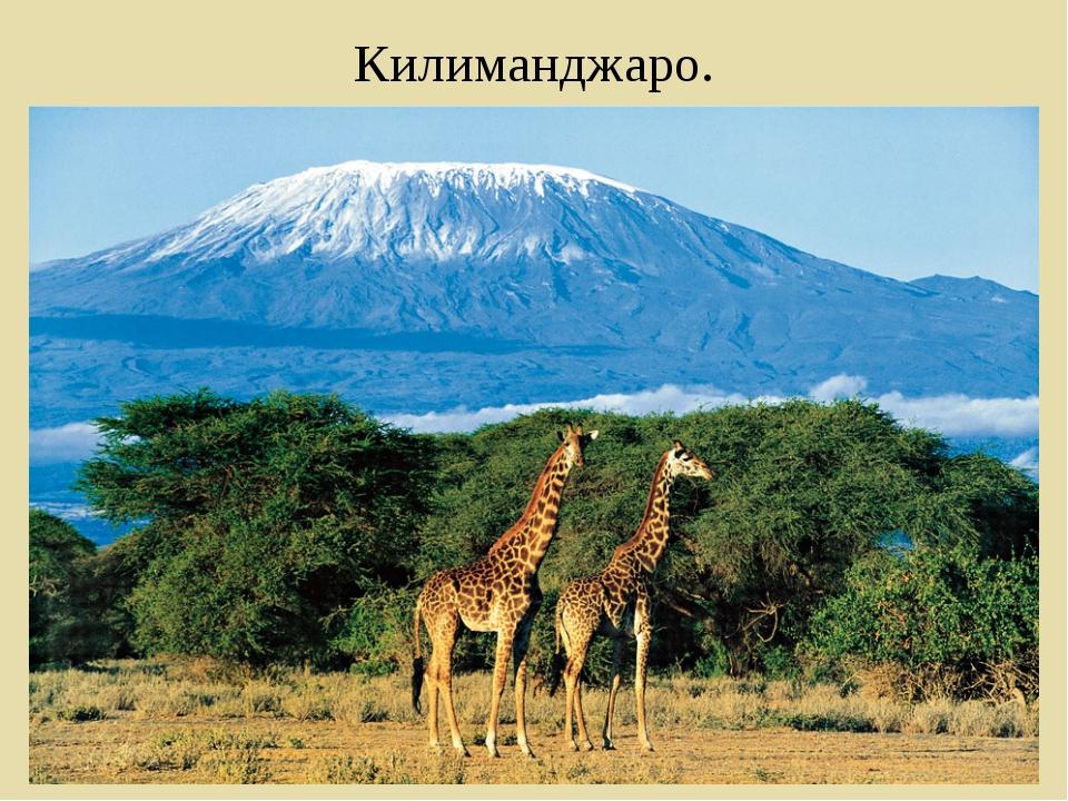 Килиманджаро.