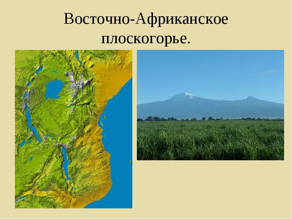 Восточно-Африканское плоскогорье.