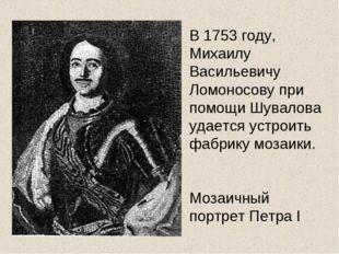 В 1753 году, Михаилу Васильевичу Ломоносову при помощи Шувалова удается устро