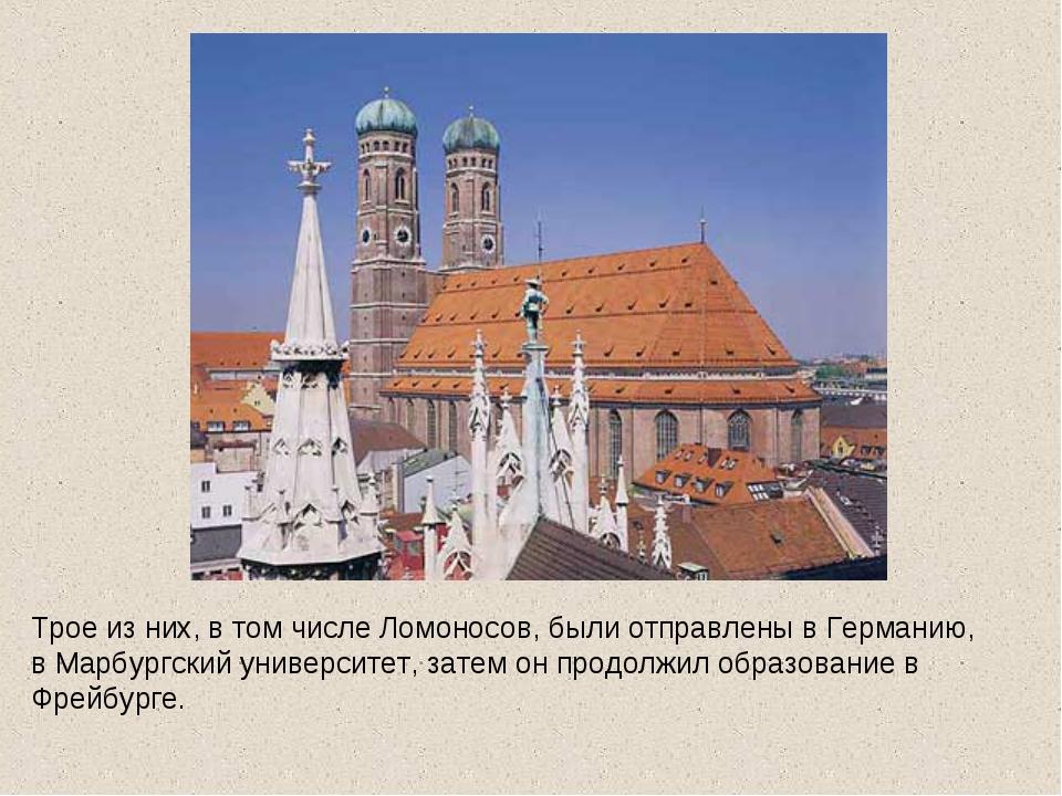 Трое из них, в том числе Ломоносов, были отправлены в Германию, в Марбургский...