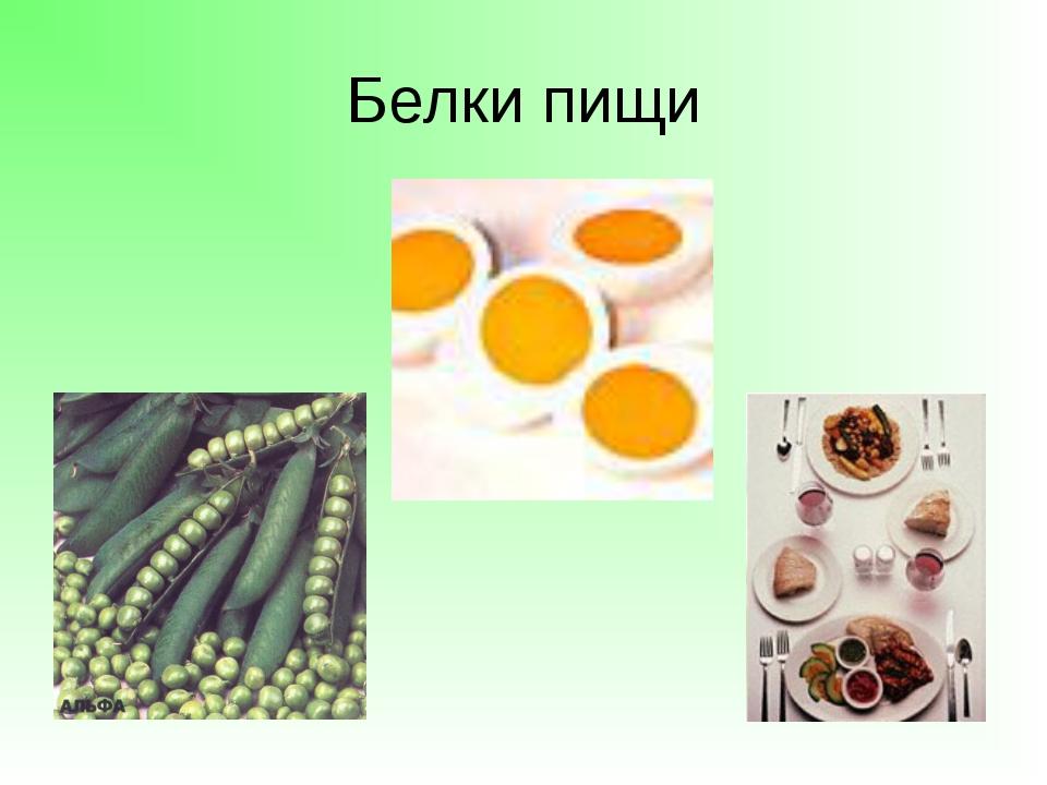 Белки пищи