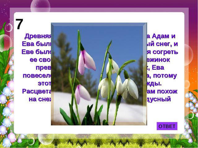 ОТВЕТ 7 Древняя легенда рассказывает: когда Адам и Ева были изгнаны из рая, ш...