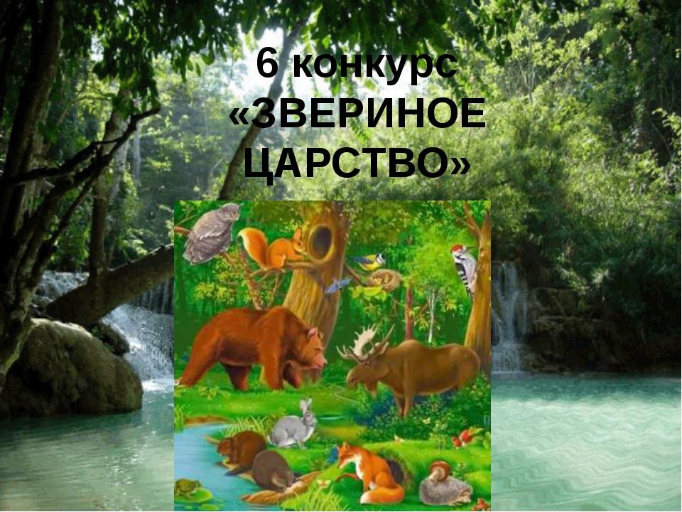 6 конкурс «ЗВЕРИНОЕ ЦАРСТВО»