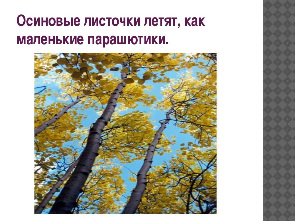 Осиновые листочки летят, как маленькие парашютики.