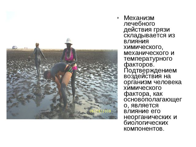 Механизм лечебного действия грязи складывается из влияния химического, механи...