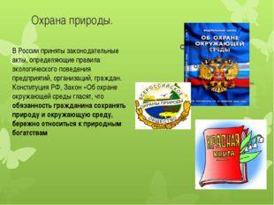 Охрана природы. В России приняты законодательные акты, определяющие правила э