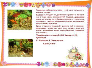 Аквариум с рыбками представляет собой очень интересное и красивое зрелище. М