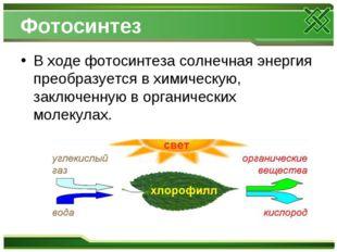 Фотосинтез В ходе фотосинтеза солнечная энергия преобразуется в химическую, з