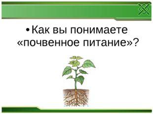 Как вы понимаете «почвенное питание»?