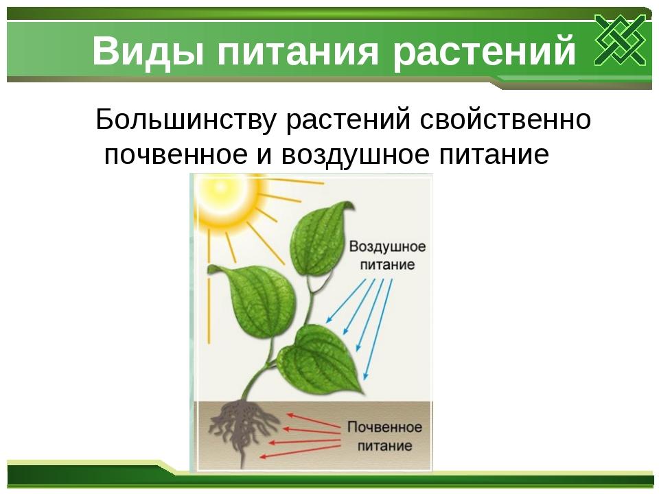 Виды питания растений Большинству растений свойственно почвенное и воздушное...