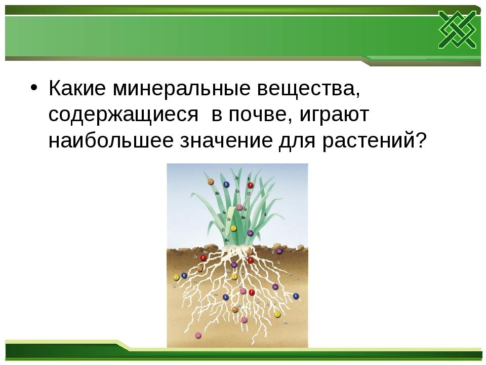 Какие минеральные вещества, содержащиеся в почве, играют наибольшее значение...